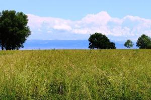 landscape-369113_1280