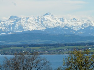 lake-constance-52512_1280
