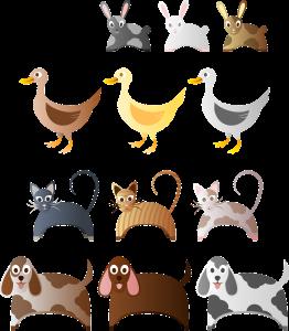 animals-158353_1280