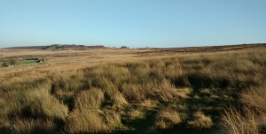 Haworth moors